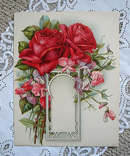 Antique Cabbage ROSES Print Chromolithograph Sweet Peas Rose