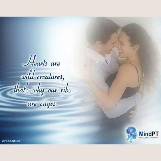 #mindpt #quote #love