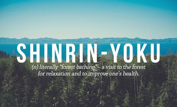 14 Perfect Japanese Words You Need In Your Life