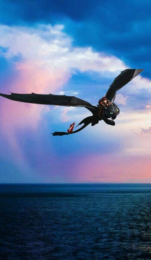 Idea By Kiana On Dragon Haert How Train Your Dragon How To