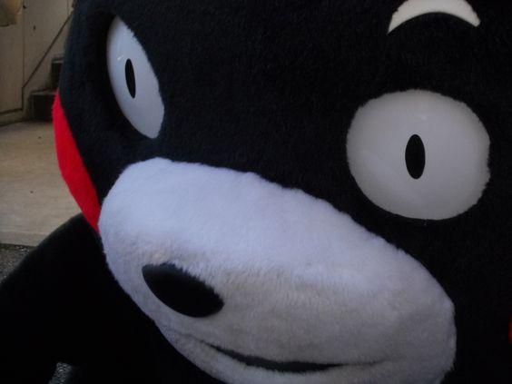 Sein Name ist Kumamon.    Er ist nicht das Maskottchen des Roasso Kumamoto, sondern  das  des Kumamoto.