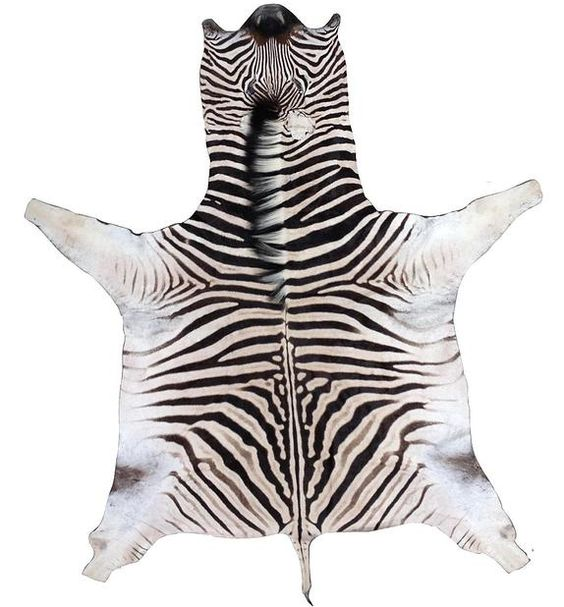 Forsyth - Zebra Rugs.