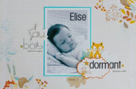 """Page """"Elise au bois dormant"""""""