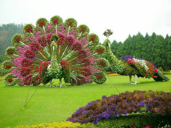 Arte ou jardim