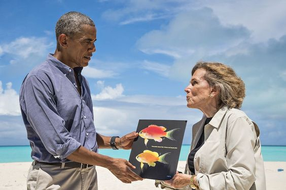 Next time he's vacationing in Hawaii, President Barack Obama might just bump into his new namesake: a pink, yellow and blue coral-reef fish that researchers have named in the president's honor.  Researchers discovered the previously unknown fish species, now dubbed Tosanoides obama, during a