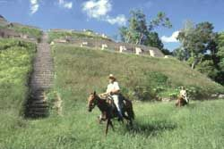Horseback riding in Belize - MAYAN JUNGLE RIDE exploring the ruins on horses??  how cool would that be....