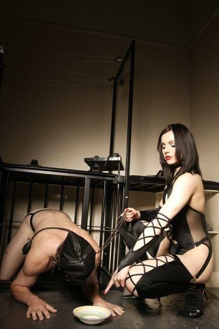 Femdom latex mistress dog slave