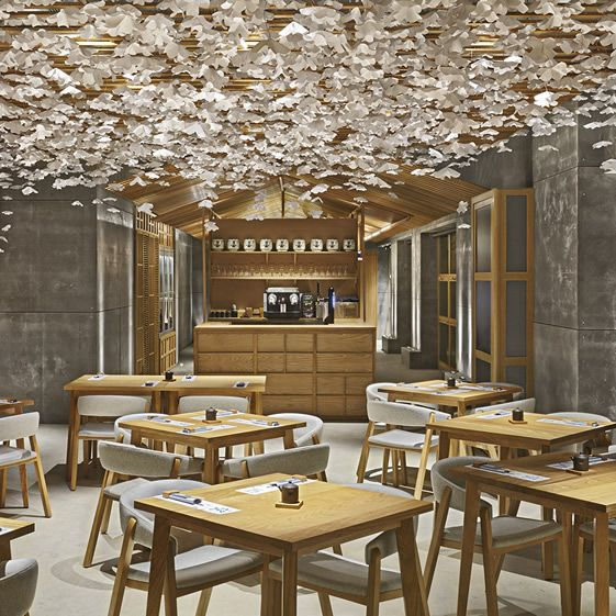 modern chinese restaurant sustainable wood gifts australianwoodworkcomau wood restaurants pinterest modern restaurant design woods restaurant and - Contemporary Restaurant 2015
