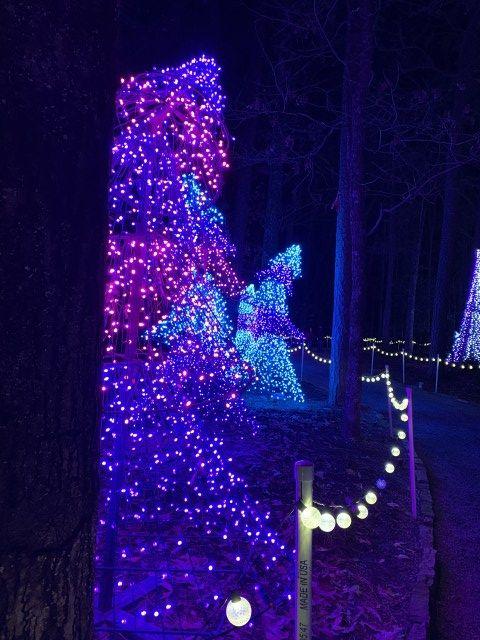 f1cb486abcfaadb3eeb0ecb753b59328 - Garvan Gardens Hot Springs Christmas Lights