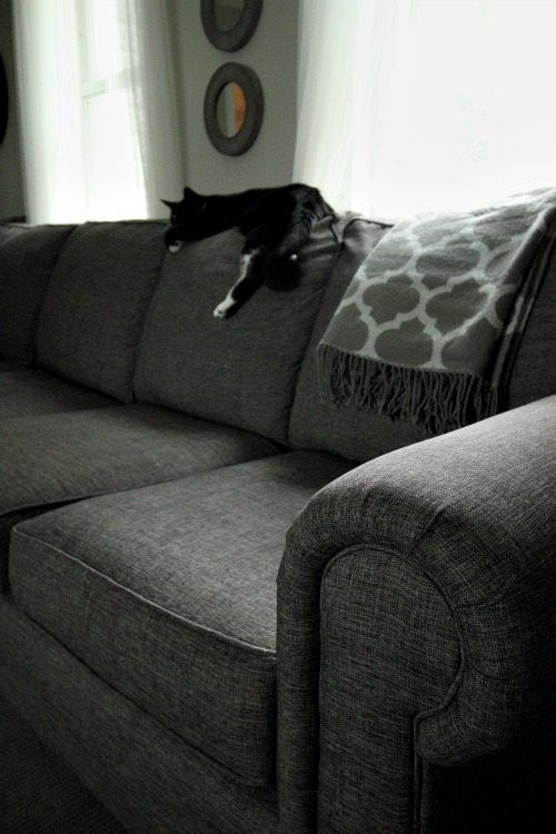 How To Properly Clean Upholstery Cleaning Upholstered Furniture Cleaning Upholstery Cleaning Hacks