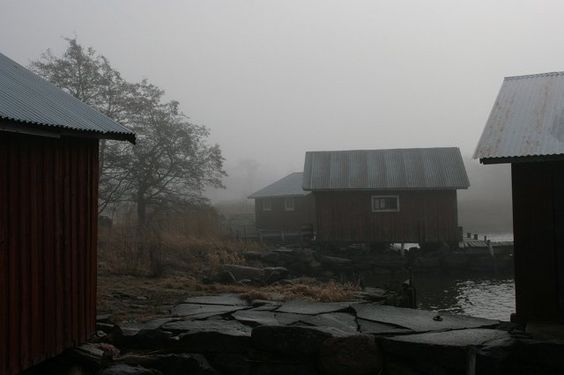 Venevajat sumussa / Anne Kimiläinen