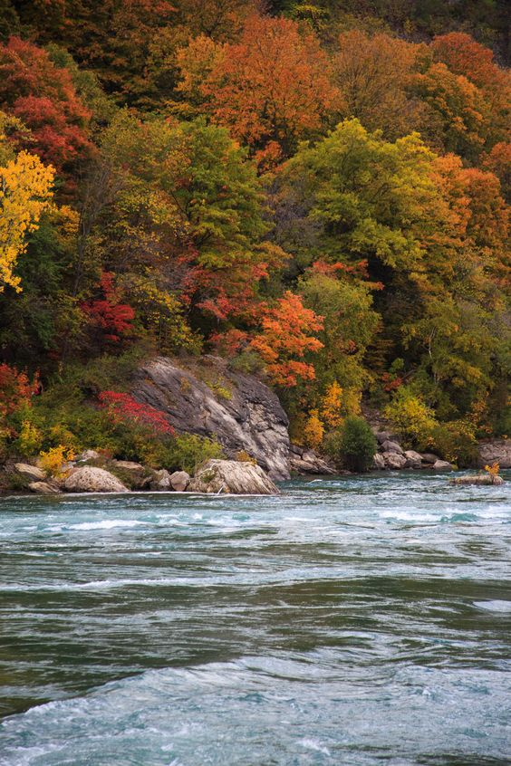 """autumncamera: """" Canadian side """""""