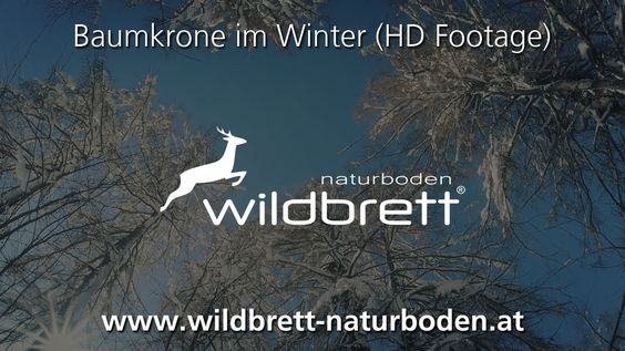 Baumkrone im Winter (HD Footage) | Wildbrett Naturboden