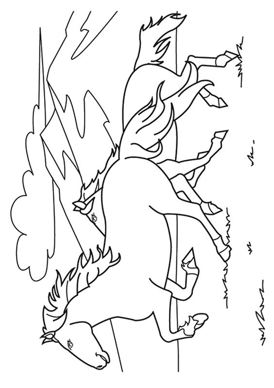 The Mustang Horse Coloring Pages Coloring Pages Horse Art Drawing