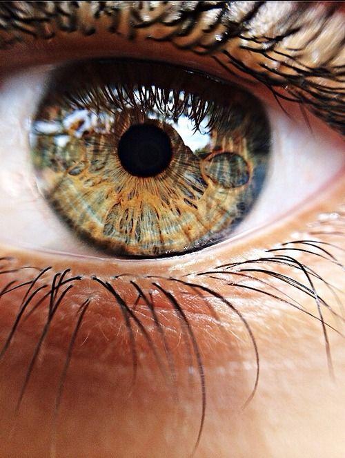 Ojos: