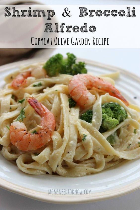 Shrimp and Broccoli Alfredo | Copycat Olive Garden | Recipe | Pasta ...