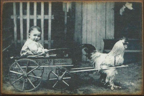 Wood Magnet Chicken Baby Wagon 1800s Vintage by MyFathersHouse4