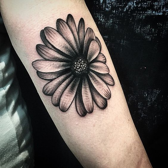 Gerber Daisy Tattoo: Daisy Tattoo But Would Add Some Color And It'd Be On My