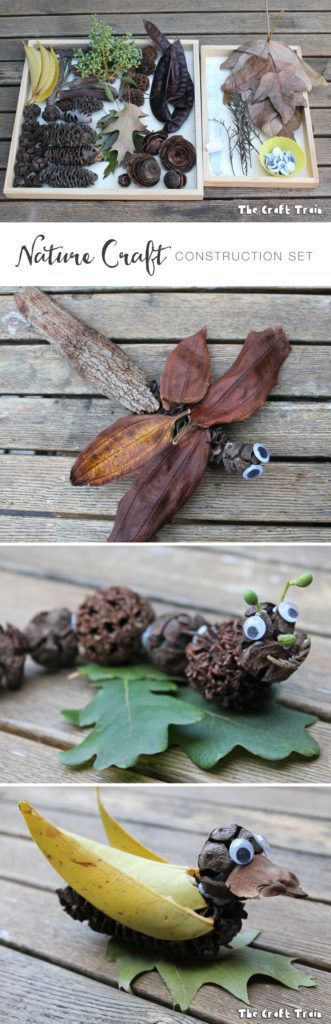 Nature Craft Construction Kit: sticky tack, googly eyes and nature items collected from the park or garden. You can make all sorts of things!: