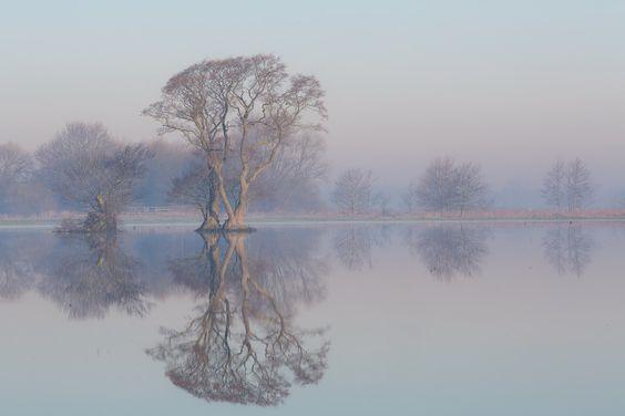 djmatzek: Nebel in der Wümmeniederung bei Fischerhude