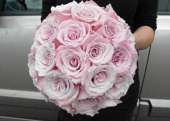 faith roses | Flowers | Pinterest | Images of faith, Faith ...