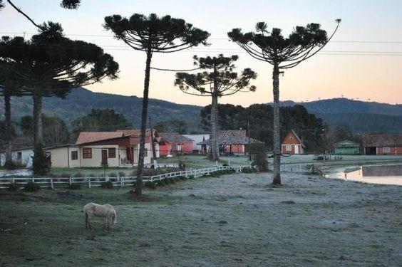Frio ao amanhecer de Lages, na Serra Catarinense, ao amanhecer desta quinta-feira, 28 de agosto de 2014. A temperatura na cidade chegou a -1ºC, mas a mínima no Estado foi de -6,8ºC, em Urupema:imagem 18