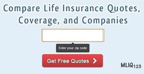 Life Insurance Definition | Life Insurance | Pinterest | Definitions And Life  Insurance