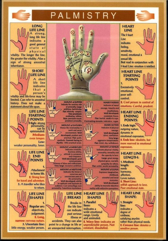 Palmistry~ Basic quide. Very helpful and handy :):