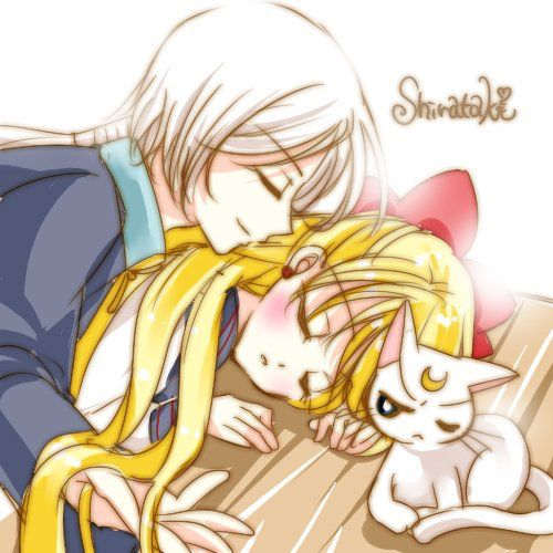 Minako and Yaten...Artemis is not pleased