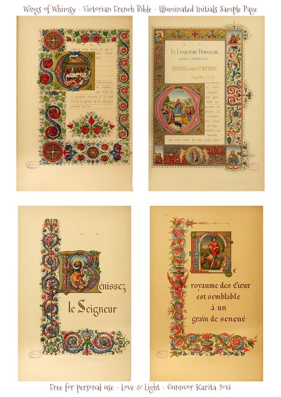 WIngs of Whimsy: Illuminated Victorian French Bible - Les Evangiles 1864