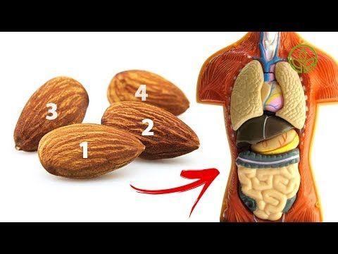 Das Passiert Mit Deinem Korper Wenn Du Taglich 4 Mandeln Isst Gesund Leben Youtube Gesund Leben Gesundheit Mandeln