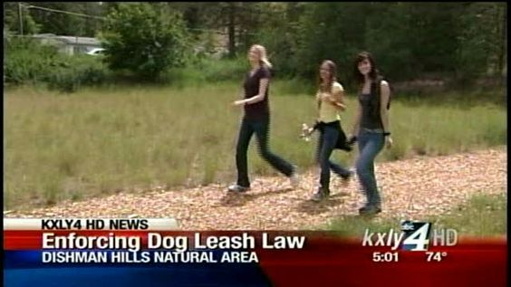 Park rangers crack down on unleashed dogs.