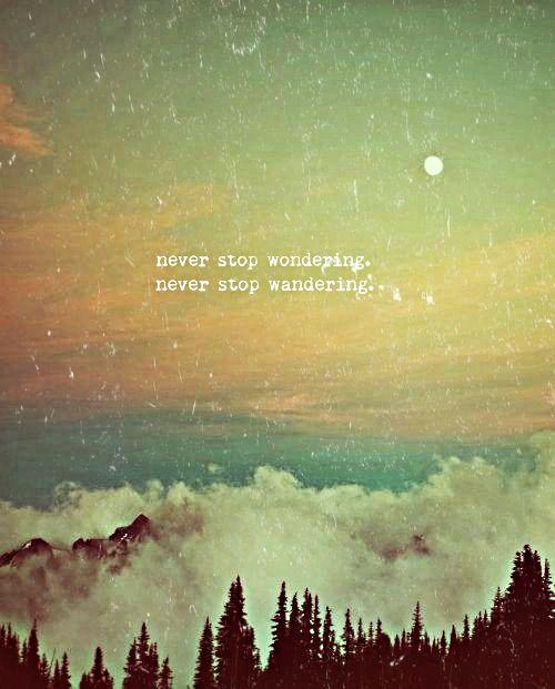 "Travel quote ""Never stop wondering. Never stop wandering."":"