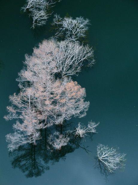 Yunishikawa Dam, Nikko, Japan: photo by かも