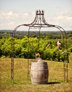 Vineyard Ceremony Arch