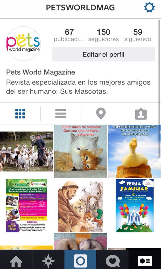 Gracias a todos los que nos siguen  Ya somos 150 en Instagram.  También nos encuentras como petworldmag en Facebook, Twitter y YouTube.  #PetsWorldMagazine