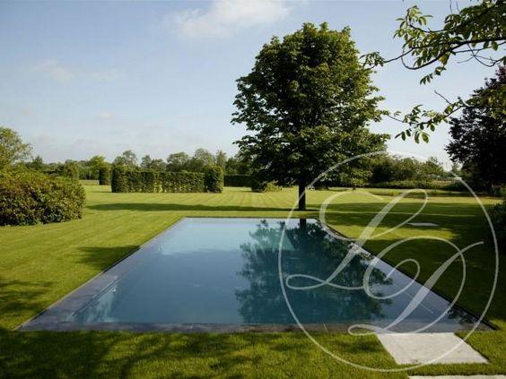 Pool infinity garden pool pinterest pools for Infinity pool design uk