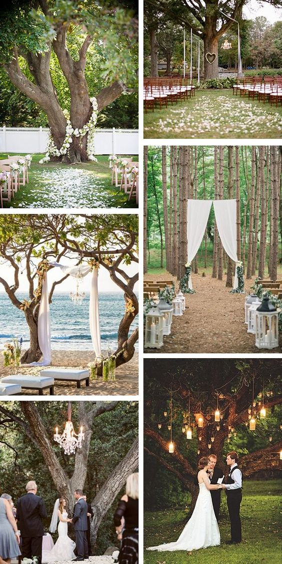 Outdoor Wedding Ceremony Under A Tree | Wedding Ideas