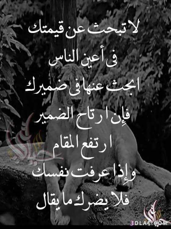 صور حكم وامثال رائعة 2020 حكم ومواعظ واقوال عن الصمت والفراق والحياة والصداقة للفيس Wisdom Quotes Life Arabic Quotes Wisdom Quotes