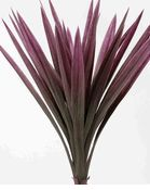Natural Touch 25 in. Yucca Plant   $14 each/ 2 for $12 each