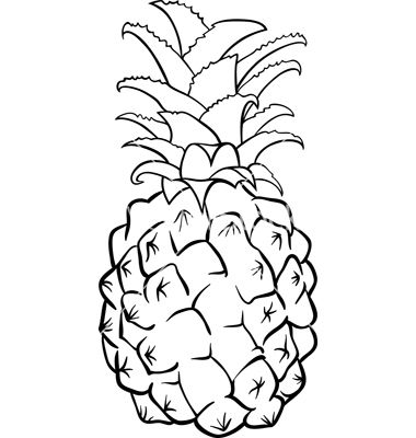 Pineapple Fruit For Coloring Book Vector 1348751 By IgorZakowski On