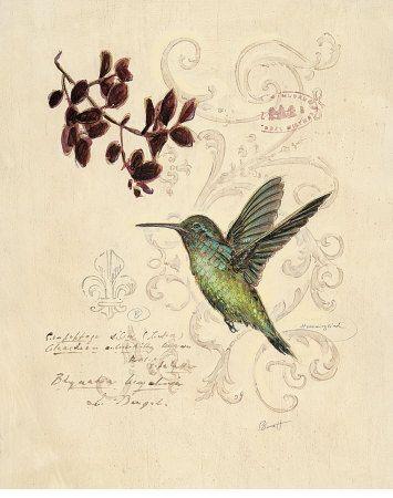 Chad Barrett - Filigree Hummingbird Art Print