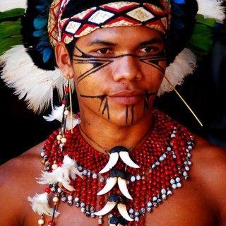 indios-brasileiros-