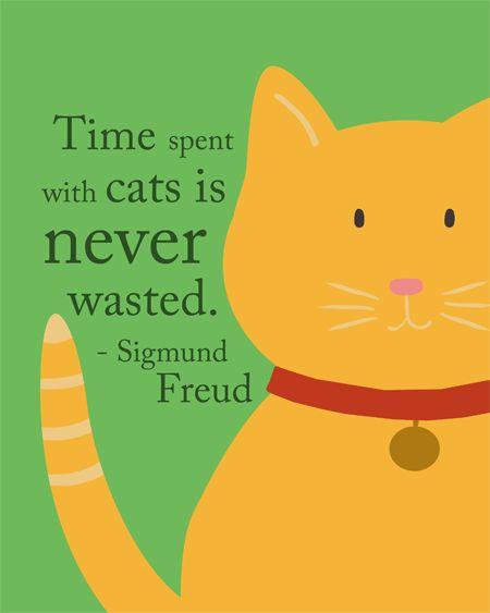Tempo gasto com gatos nunca é desperdiçado.