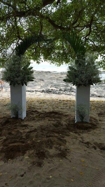 Floristeria cristal y hotel Barcelo Playa Langosta