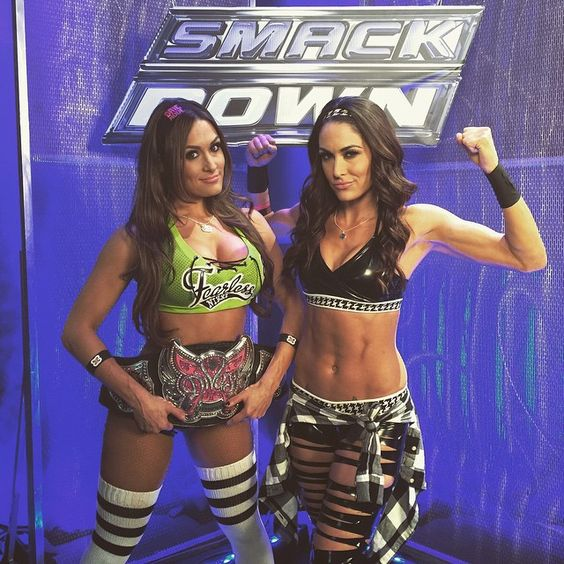 The Bella Twins (Nikki and Brie)