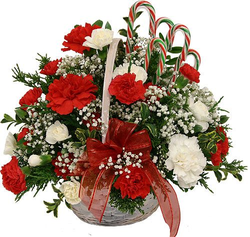 Christmas Flower Arrangements |: