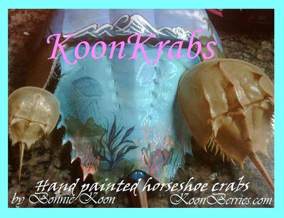 KoonKrabs~ Hand Painted Horseshoe Crabs by Bonnie Koon KoonBerries