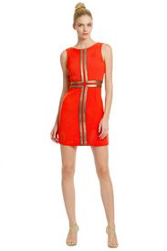 The color is golden, great statement style fromTracey Reese Pharaoh Sheath
