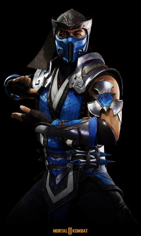 Sub Zero Warrior Mortal Kombat 11 Wallpaper Sub Zero Mortal